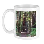 Redwood Trail Mug