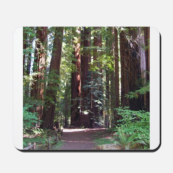 Redwood Trail Mousepad