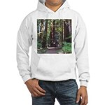 Redwood Trail Hooded Sweatshirt