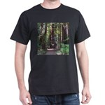 Redwood Trail Dark T-Shirt