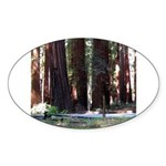 The Redwood Highway Oval Sticker
