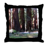 The Redwood Highway Throw Pillow