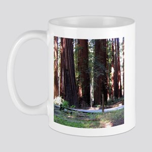 The Redwood Highway Mug