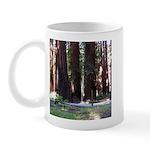 The Redwood Highway Mug