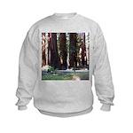 The Redwood Highway Kids Sweatshirt