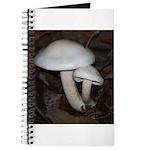 White Mushrooms Journal