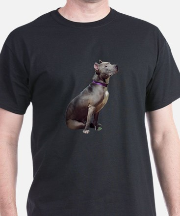 I Love (heart) Pitbulls T-Shirt