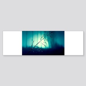 White Stalk Bumper Sticker