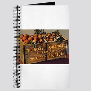 Vintage Retro Florida Oranges Journal