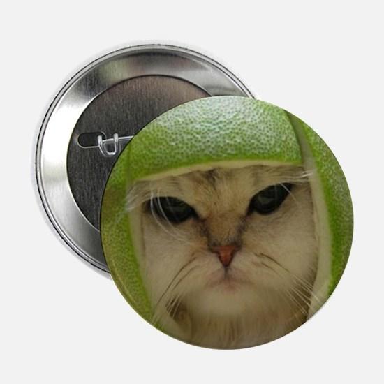 "Limecat 2.25"" Button (10 pack)"