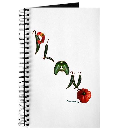 Plano Journal