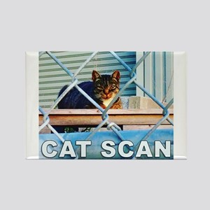 Cat Scan Magnets