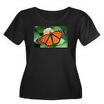 Monarch Butterfly Women's Plus Size Scoop Neck Dar