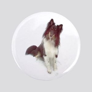 "Curious Sheltie 3.5"" Button"