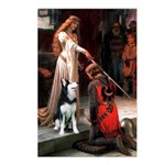 The Accolade & Husky Postcards (Package of 8)