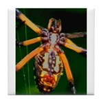 Spider Woman Tile Coaster