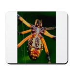 Spider Woman Mousepad