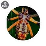 "Spider Woman 3.5"" Button (10 pack)"