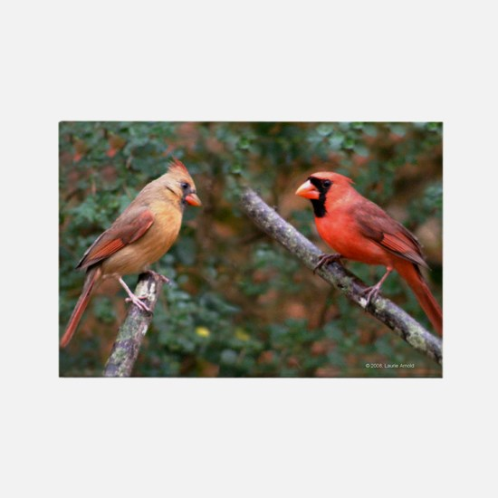 Two Cardinals Rectangle Magnet
