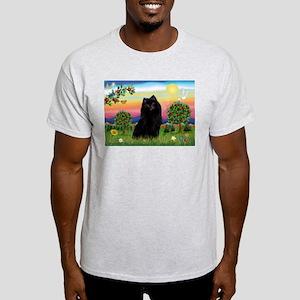Schipperke in Bright Country Ash Grey T-Shirt