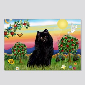 Schipperke in Bright Country Postcards (Package of