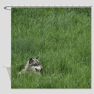 Watchful Wolf Shower Curtain