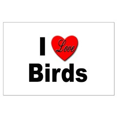 I Love Birds for Bird Lovers Posters