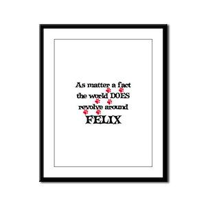The World Revolves Around Fel Framed Panel Print