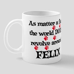 The World Revolves Around Fel Mug