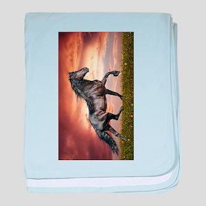 Beautiful Black Horse baby blanket