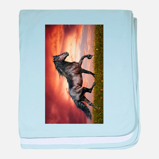 Beautiful Black Horse baby blanket