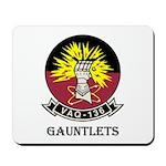 VAQ-136 Gauntlets Mousepad