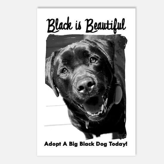 Adopt a Big Black Dog Postcards (Package of 8)