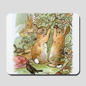 Beatrix Potter - Peter Rabbit : Rabbits Mousepad