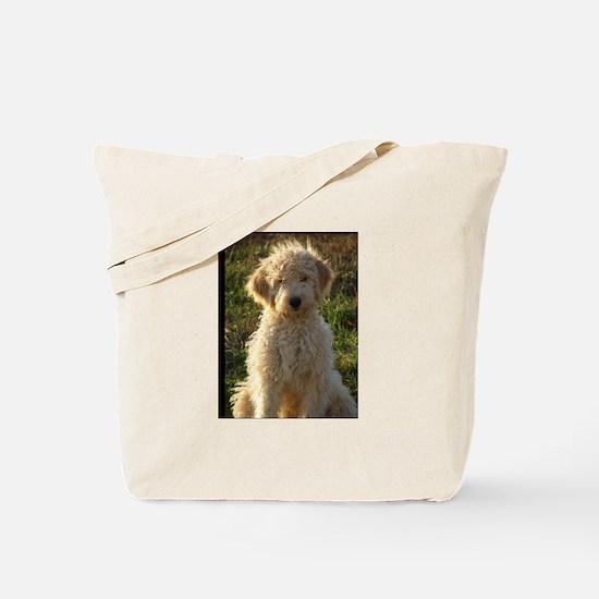 Cute Goldendoodles Tote Bag