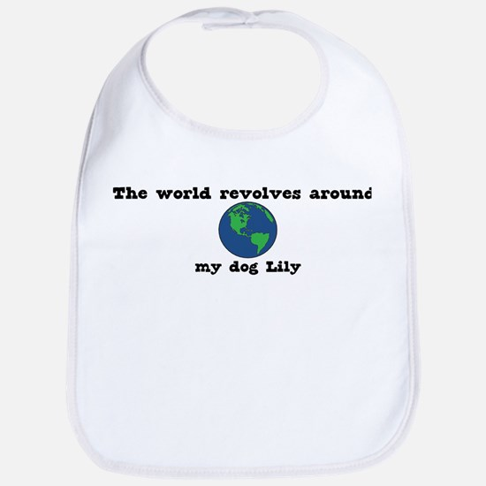 World Revolves Around Lily Bib