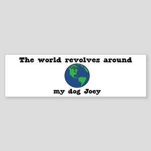 World Revolves Around Joey Bumper Sticker