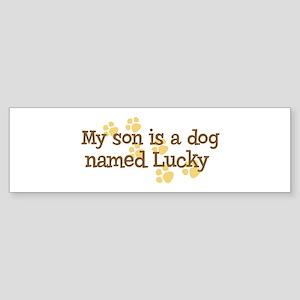 Son named Lucky Bumper Sticker