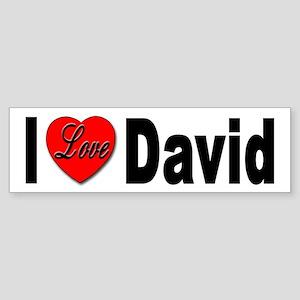 I Love David Bumper Sticker for David Lovers