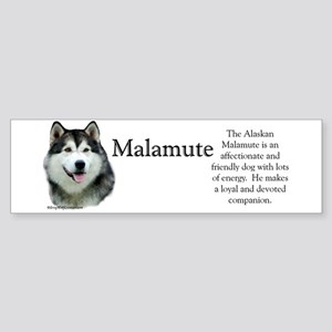 Malamute Profile Bumper Sticker