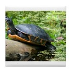 Redbelly Turtle Tile Coaster