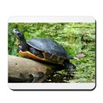 Redbelly Turtle Mousepad