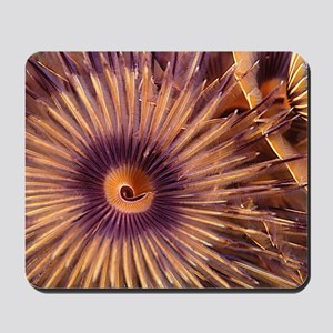 Christmas Tree Worm Mousepad
