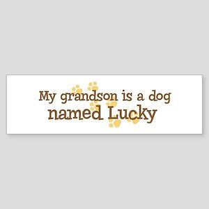 Grandson named Lucky Bumper Sticker
