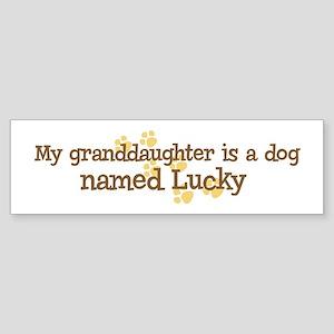 Granddaughter named Lucky Bumper Sticker