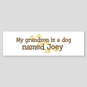 Grandson named Joey Bumper Sticker