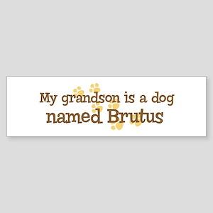 Grandson named Brutus Bumper Sticker