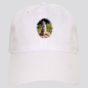 THE LOOKOUT Cap