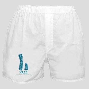 XY Male Boxer Shorts