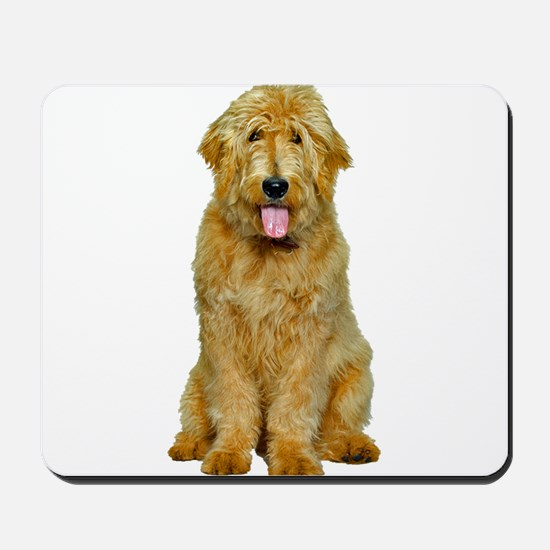 Goldendoodle Photo Mousepad